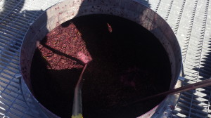 Plunging 2014 Pinot Noir